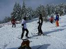 Skifahrt 2014_5