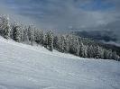 Skifahrt 2014_94